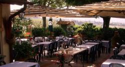 ristorante_artimino_da_delfina